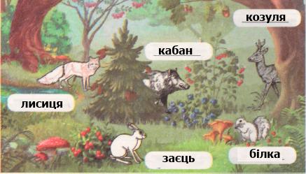 Гдз 4 Клас Зошит З Природознавства Нова програма